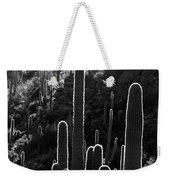 Saguaro Backlit Black And White Weekender Tote Bag