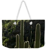 Saguaro Cactus Backlit Weekender Tote Bag
