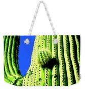 Saguaro Weekender Tote Bag