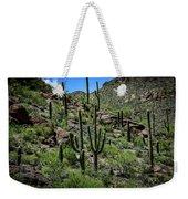 Saguaro Hillside Weekender Tote Bag