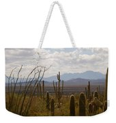 Saguaro National Park Az Weekender Tote Bag