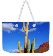 Saguaro Np Weekender Tote Bag