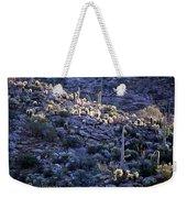 Saguaro Sunrise Weekender Tote Bag