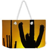 Saguaro Sunset Weekender Tote Bag by Sandra Bronstein