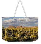 Saguaronatlparkeveninglight Weekender Tote Bag