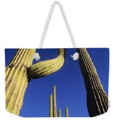 Saguaros Dwaft One Another Weekender Tote Bag