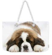 Saint Bernard Puppy Sleeping Weekender Tote Bag