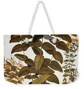 Saint-johns-wort, 1613 Weekender Tote Bag