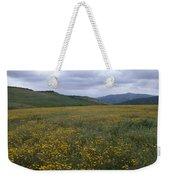 Salisbury Potrero - Sierra Madre Mountains Weekender Tote Bag
