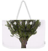 Salix Viminalis Tree Weekender Tote Bag