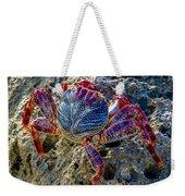 Sally Lightfoot Crab 1 Weekender Tote Bag