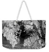 Salmon River Autumn Weekender Tote Bag