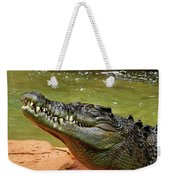 Saltwater Crocodile By Kaye Menner Weekender Tote Bag