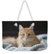 Samson_speaks Kitten Years Weekender Tote Bag