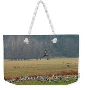 Sand Hill Crane Migration Weekender Tote Bag