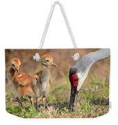 Sandhill Crane 13 Weekender Tote Bag