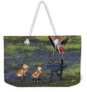 Sandhill Crane And Babies Weekender Tote Bag