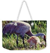 Sandhill Crane And Chick Weekender Tote Bag