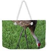 Sandhill Crane II Weekender Tote Bag