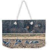 Sandhill Crane Series #3 Weekender Tote Bag