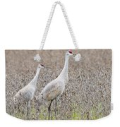 Sandhill Crane Stroll, Antigone Canadensis Weekender Tote Bag