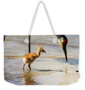 Sandhill Crane With Chick Weekender Tote Bag