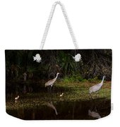 Sandhill Cranes And Chicks Weekender Tote Bag
