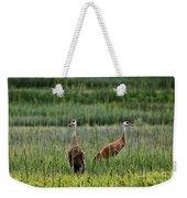 Sandhill Cranes II Weekender Tote Bag