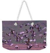 Sandhill Cranes  Weekender Tote Bag by Jeff Swan