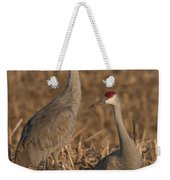 Sandhill Cranes On Watch Weekender Tote Bag