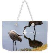 Sandhill Cranes Reflection On Pond Weekender Tote Bag