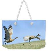 Sandhill Cranes Taking Flight Weekender Tote Bag