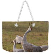 Sandhill Delight Weekender Tote Bag