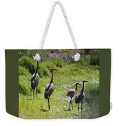 Sandhill Family By The Pond Weekender Tote Bag