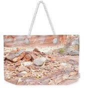 Sandstone Colors In Wash 3 - Valley Of Fire Weekender Tote Bag