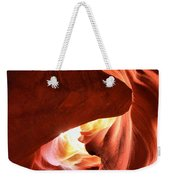 Sandstone Dog Abstract Weekender Tote Bag