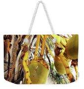 Sanibel Coconuts Gp Weekender Tote Bag