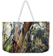 Santa Barbara Eucalyptus Forest Weekender Tote Bag