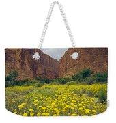 317804-santa Elena Canyon In Bloom  Weekender Tote Bag