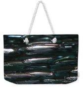 Sardine Weekender Tote Bag