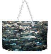 Sardines 1 Weekender Tote Bag
