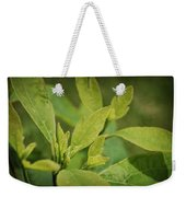 Sassafras Tree Weekender Tote Bag