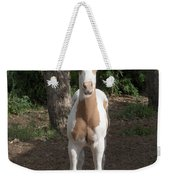 Sassy Filly Weekender Tote Bag