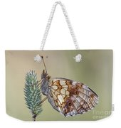 Satyr Butterfly On Blade Of Grass Weekender Tote Bag