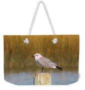 Savannah Shore Bird Weekender Tote Bag