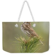 Savannah Sparrow Weekender Tote Bag