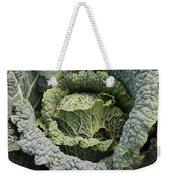 Savoy Cabbage In The Vegetable Garden Weekender Tote Bag