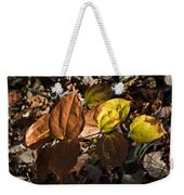 Sawbrier Or Greenbriar In The Fall Weekender Tote Bag