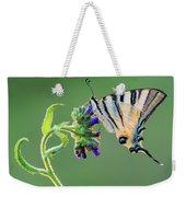 Scarce Swallowtail Weekender Tote Bag