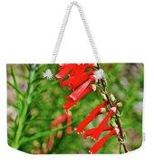 Scarlet Bugler In Rancho Santa Ana Botanic Garden In Claremont-californi Weekender Tote Bag